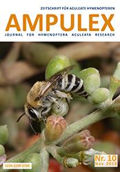 Ampulex 10 Cover
